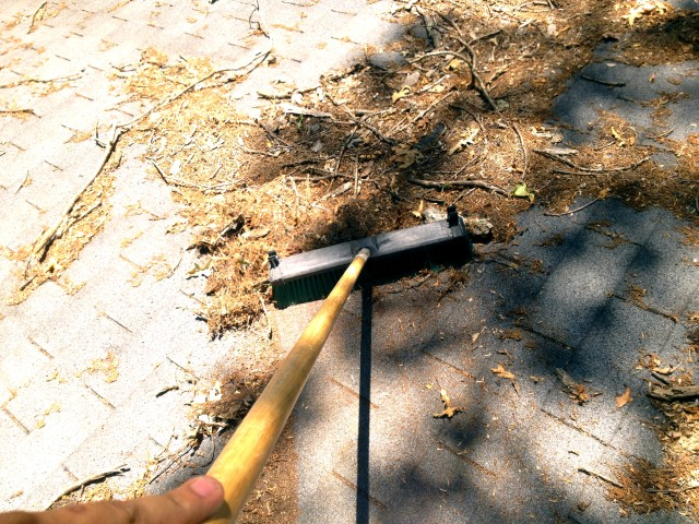 remove loose debris with soft bristle broom